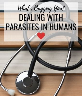parasites in humans feature