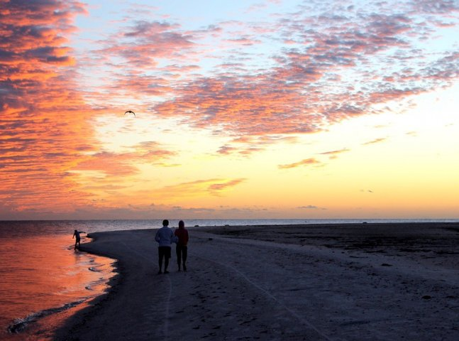 Fort Myers Florida Beach Social Distancing the Natural Way