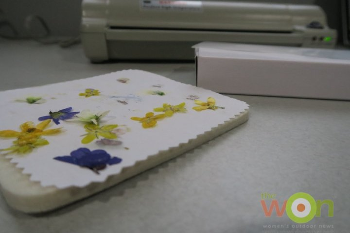dried flowers on microfleur