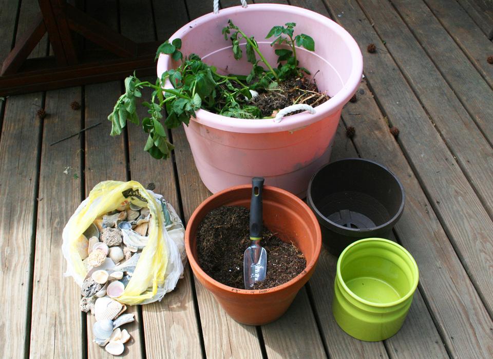 Compost Volunteer Garden Materials