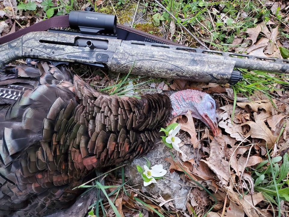 V3 Turkey Pro (Larry Case photo)