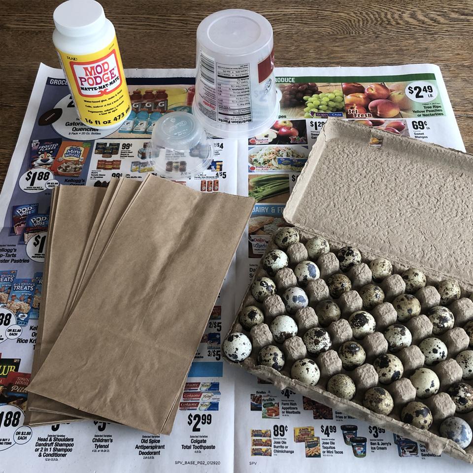 Bird Nest Materials Mod Podge Quail Eggs