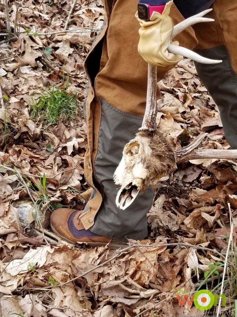 hiking  Ozarks with skull