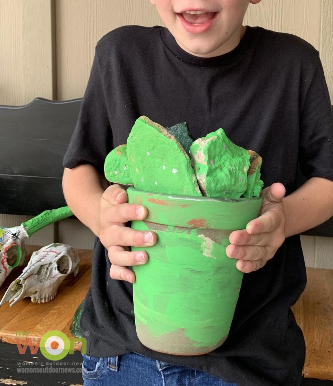 Painted succulent rocks pot