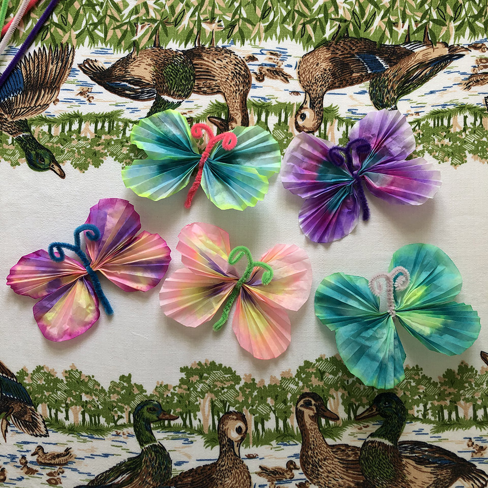 Colorful craft Coffee Filter Butterflies Flat Lay