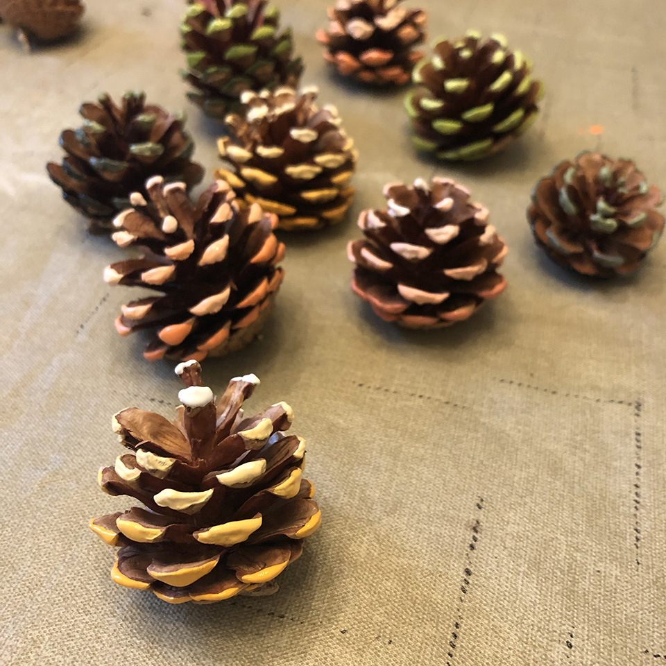 Drying Ombre Pinecones