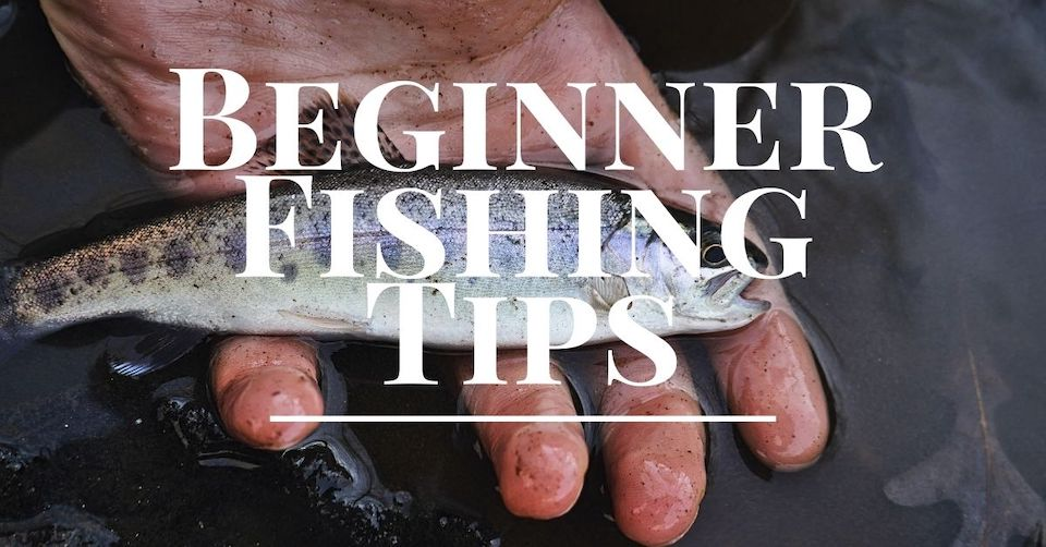 Beginner Fishing Tips