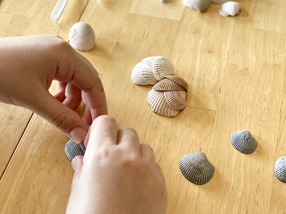 Layering Sea Shells