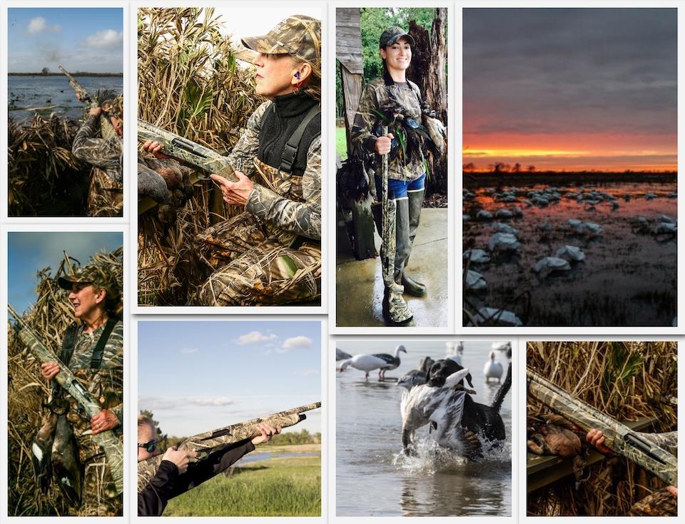 Syren Duck collage