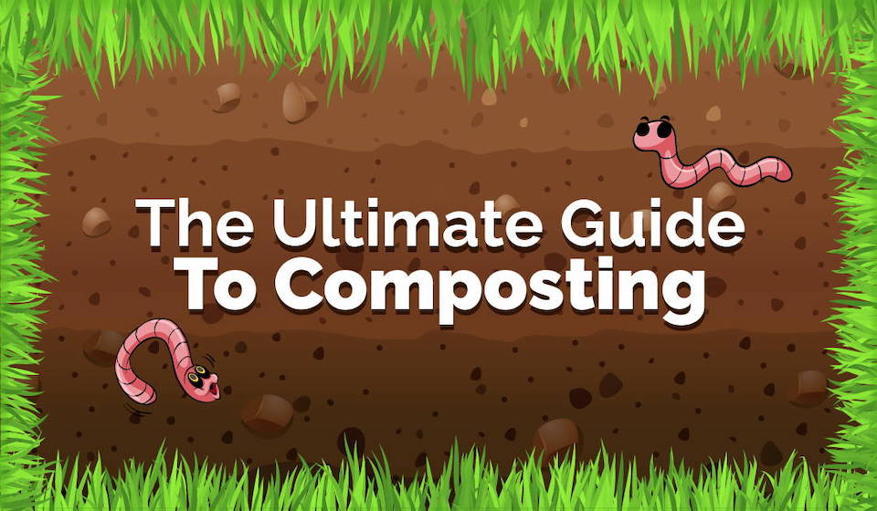 Composting and gardening Graphic