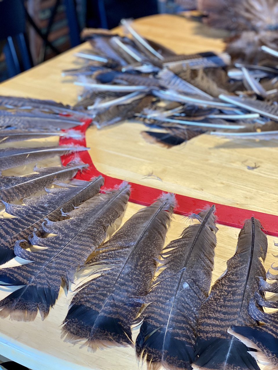 Laying out the turkey feathers for spacing before gluing