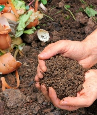 guide to composting feature