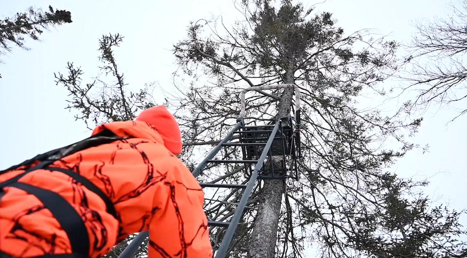 climbing into a tree stand