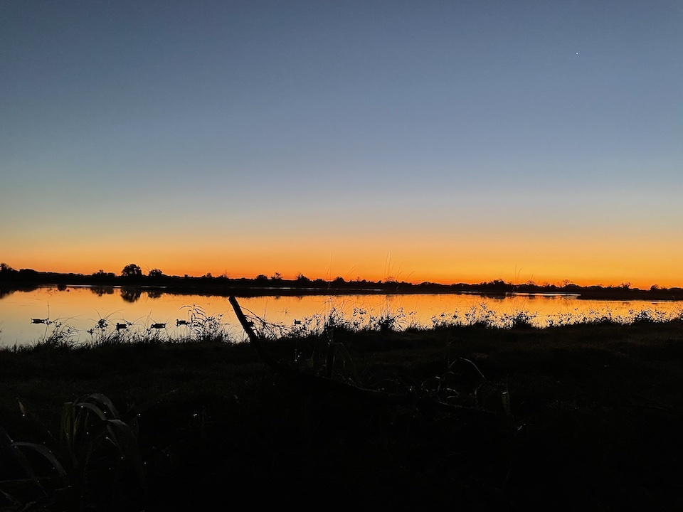 Sunrise Duck Hunting