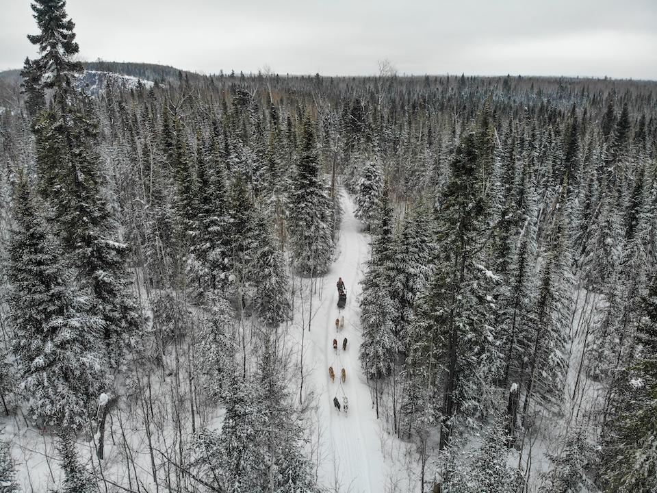 dog sledding drone