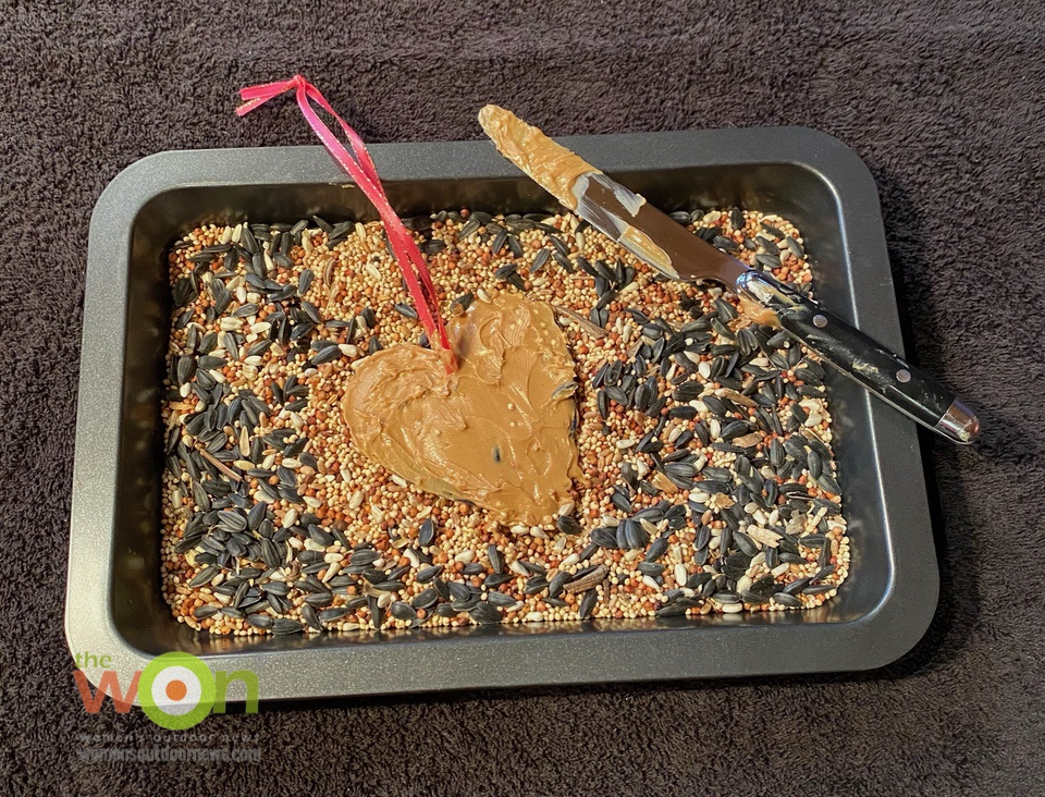 tray with birdseed