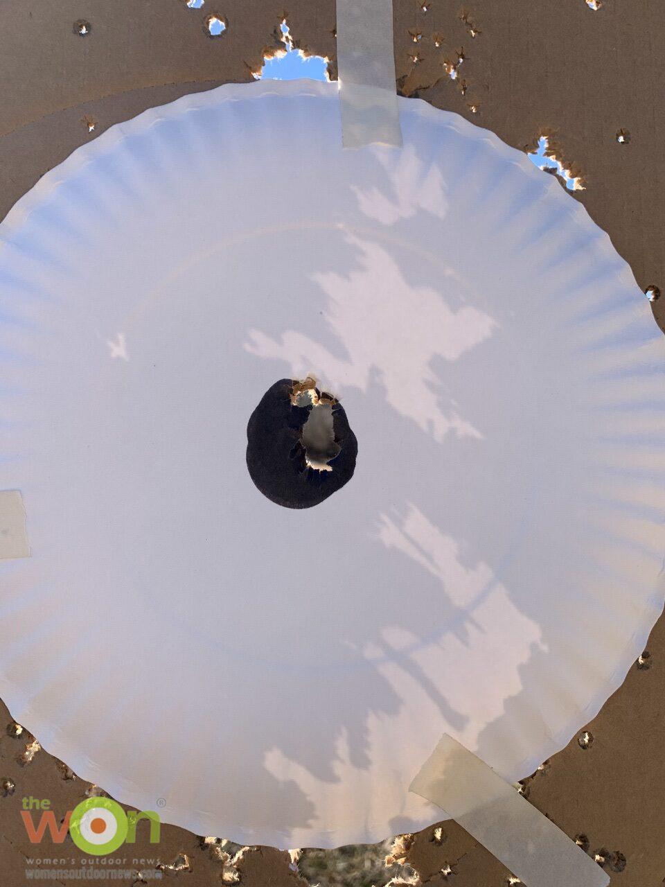Paper plate target