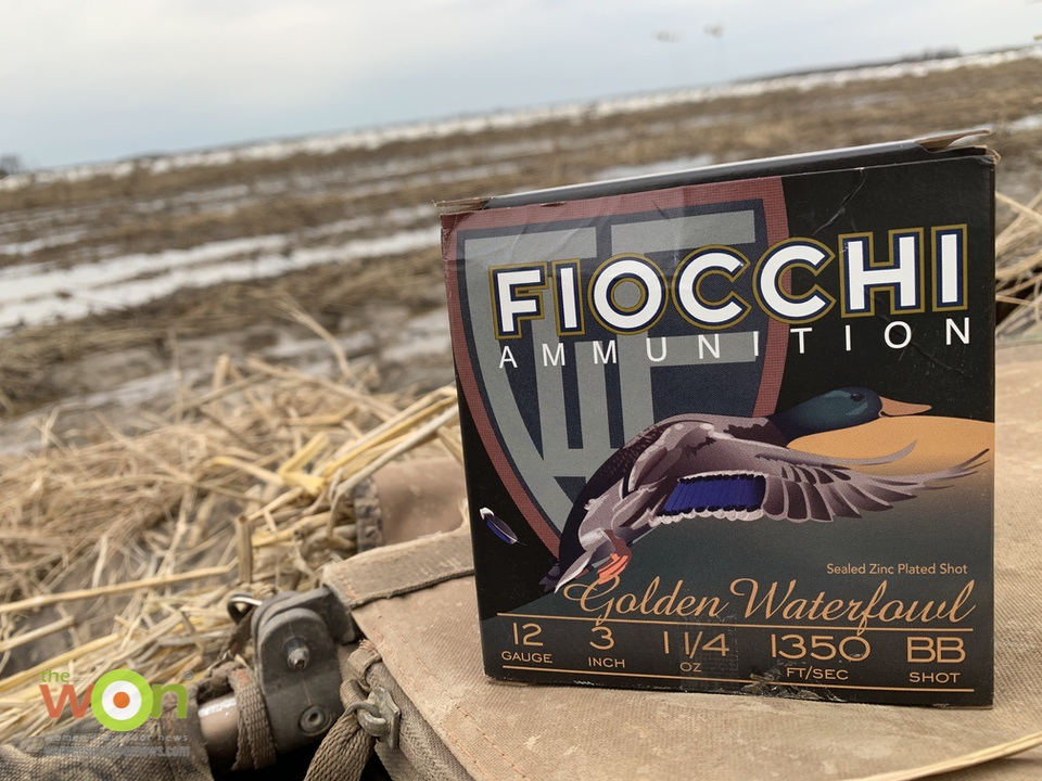Fiocchi in the field