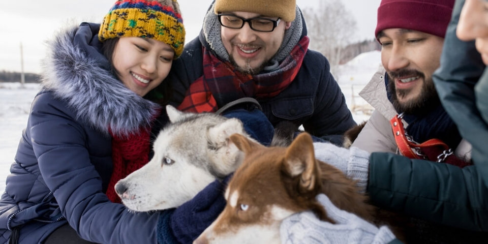 pet-friendly-ski-resorts