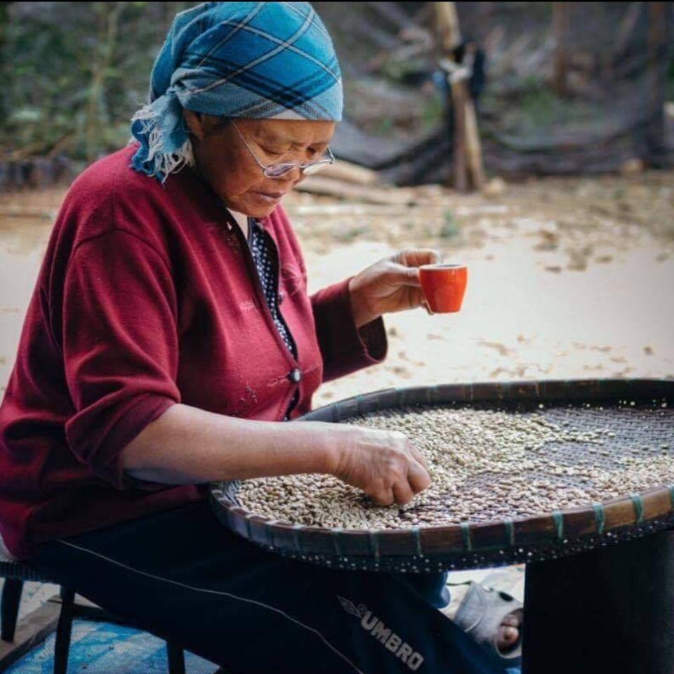 Woman sorting coffee
