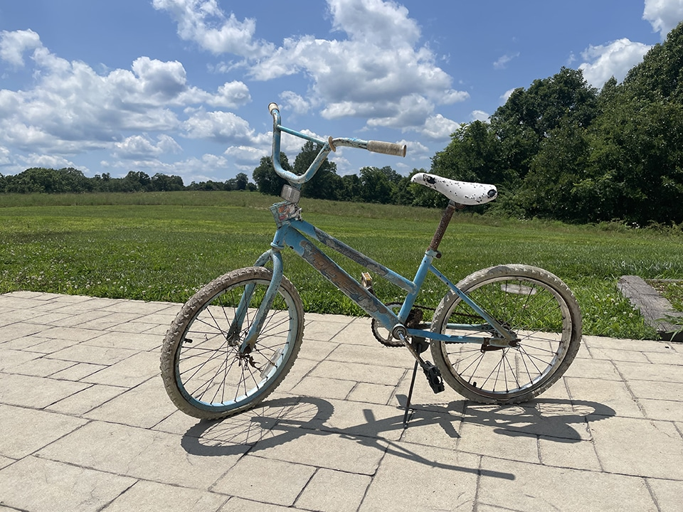 Bike out of dump
