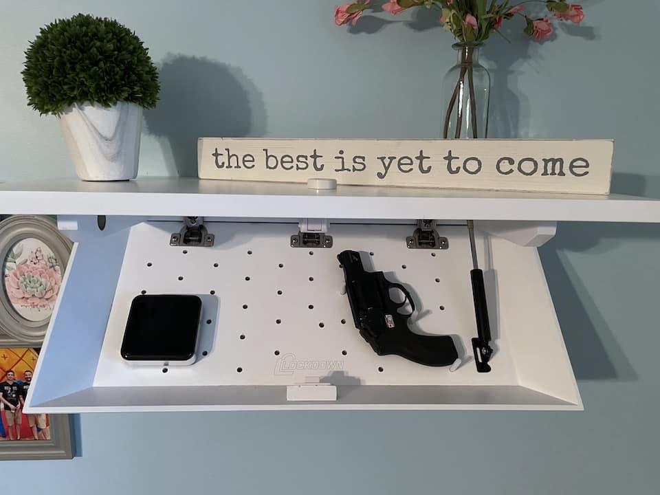 Lockdown in plain sight shelf open