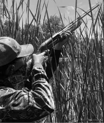 Winchester SX4 Feature