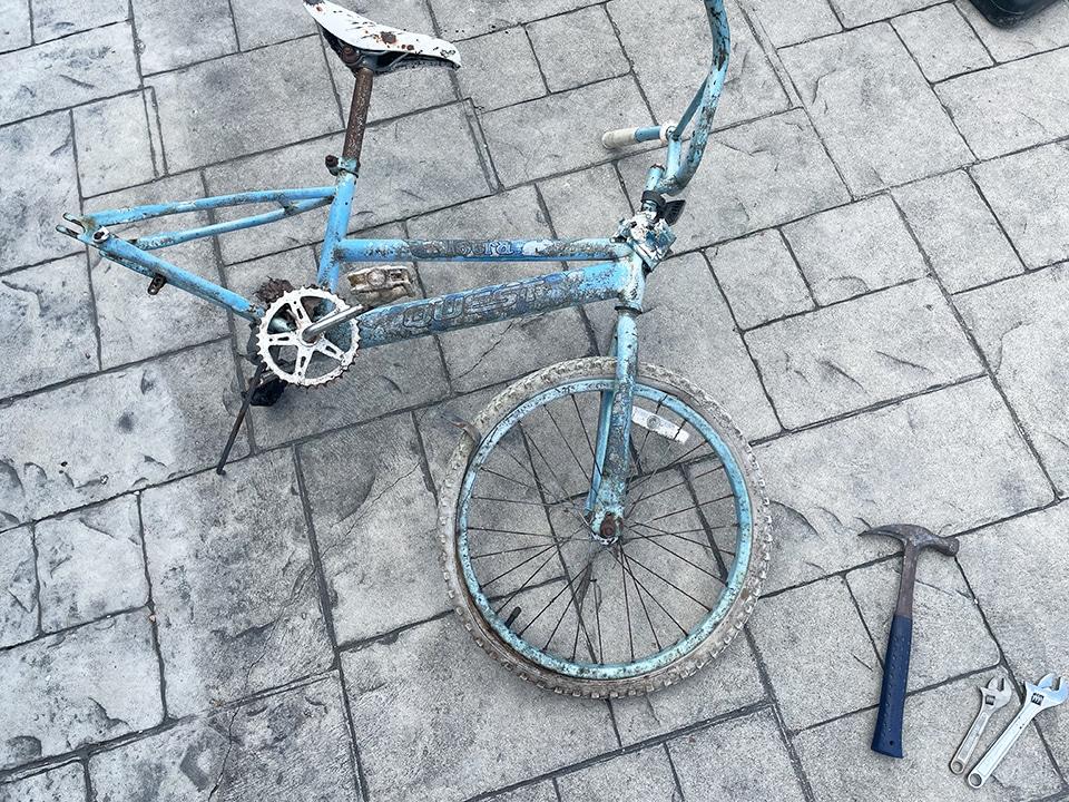 Bike Wheel harvest