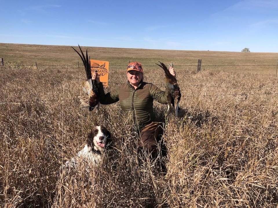 Pheasant hunt birds