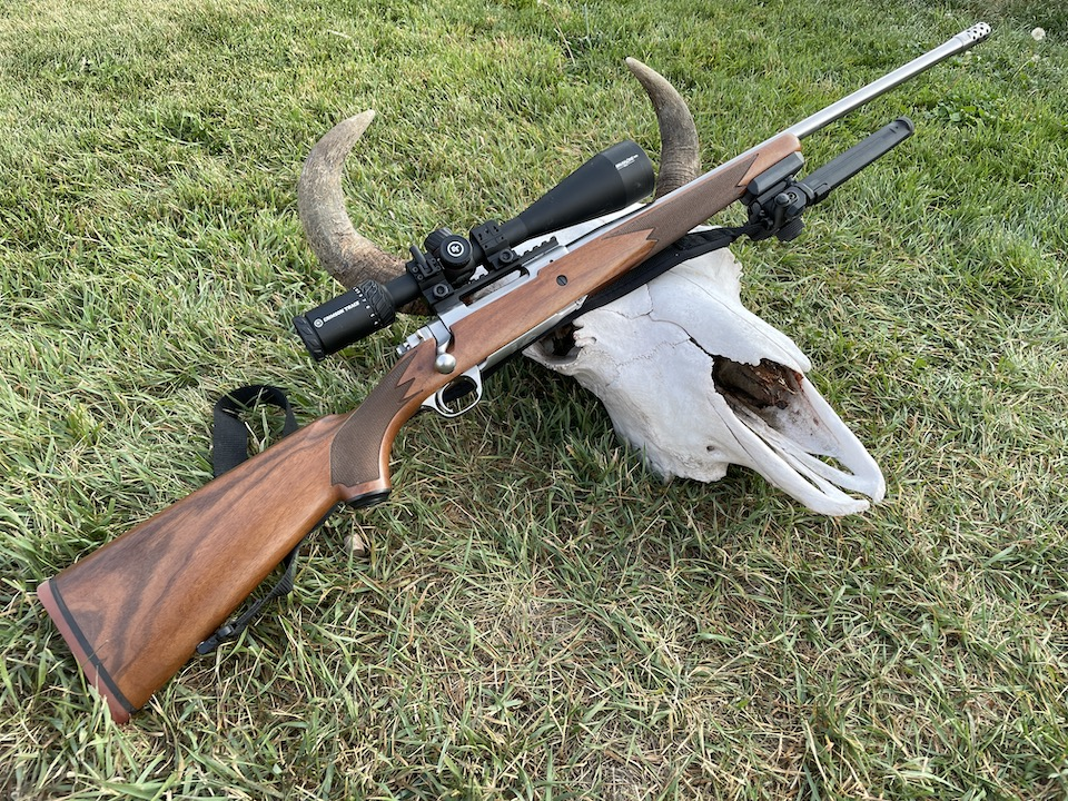 Ruger Hawkeye with bison skull found on the hunt by Caitlin