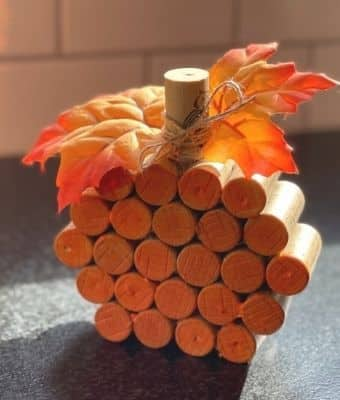 Featured with bow wine cork pumpkin